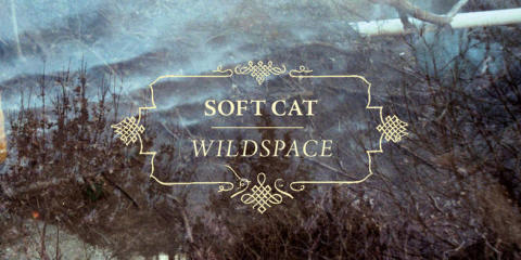 Soft Cat - It Won't be Long