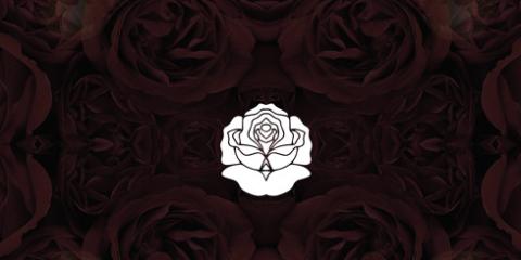 Josh Pan - Roses are Dead