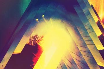 Freefallin' Sunlight